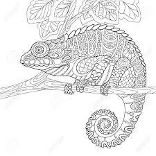 Cartoon Kameleon Geïsoleerd Op Een Witte Achtergrond Hand
