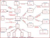 Organic Synthesis Reactions Chart Organic Chemistry