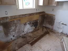 black mold under kitchen sink awesome mold in drywall behind kitchen cabinets