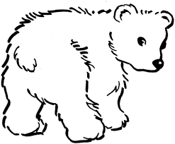 Disegno Di Cucciolo Di Orso Bruno Da Colorare Disegni Da Colorare
