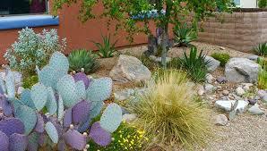 desert garden ideas.  Desert Desert Gardening In Sync With The Seasons Garden Ideas