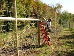 deer proof garden fence. Deer Proof Garden Fence Nice Looking Simple Page Wire Plans