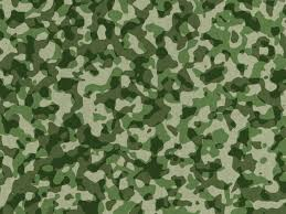 Military Camo Patterns Delectable Military Camouflage Pattern PSDGraphics
