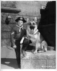 Image result for images of the adventures of rin tin tin