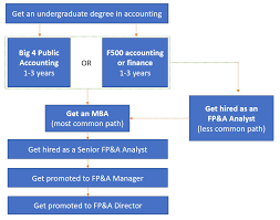 Accounting Career Progression Chart Fp A Career Path And Salary Guide Analyst To Director