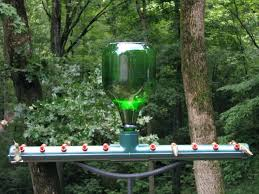diy hummingbird feeder stopper the amazing happy hour home improvement neighbor wilson quotes