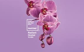 Graphics - Radiant Orchid - Pantone Color of the Year 2014: - Color trends,  color palettes , Pantone 18-3224 TCX.
