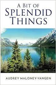 Amazon.fr - A Bit of Splendid Things - Maloney-Vangen, Audrey - Livres
