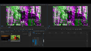Purple Green Green And Pink Video Problem In Premiere Pro And Media Encoder Cc
