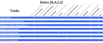 raci chart excel raci matrix a practical guide business analyst learnings