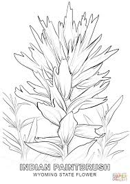Small Picture Wyoming State Flower coloring page Free Printable Coloring Pages