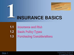 A concept applied in strict liability torts. 1 Insurance Basics 1 1 Insurance And Risk 1 2 Basic Policy Types Ppt Download