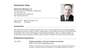 American Resume Adorable American Resume Samples Sample Resumes