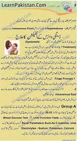 essay on dengue  essay on dengue