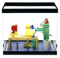 fish for office. Office Fish Tank Aquarium For The O Best Tanks . E