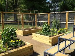 beautiful backyard garden house design with wood raised bed vegetable garden along wood and wire fence plus wire trellis and bench seat ideas