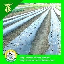 clear black plastic sheet garden sheeting sheets for thin gardens black 6 mil plastic sheeting for gardens
