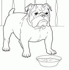 Small Picture A Bulldog Puppy Catching A Ball Coloring Page Animal Coloring
