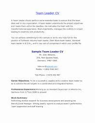 Team Leader Resume Format Bpo 6 Gigiozanon Com