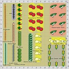 Small Picture Vegetable Garden Layouts erikhanseninfo