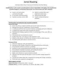 resume summary of qualification cdl truck driver resume example summary of qualification cdl truck driver resume example plus can communication customer