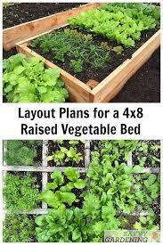4x8 raised bed vegetable garden layout
