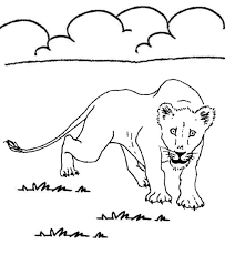 Small Picture Learning Years Animal Coloring Pages Lion