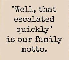 Funny Family Quotes Gorgeous Best Funny Quotes Family Motto OMG Quotes Your Daily Dose Of