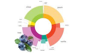 Surprising Blueberry Pairings Foodpairing Blog
