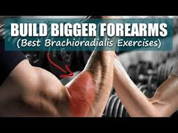 forearm size build bigger forearms best brachioradialis exercises youtube