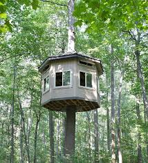 Thread: Tree House time (pictures)
