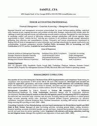 staff auditor resume sample
