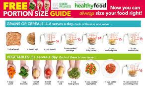 Portion Size Guide Alsco