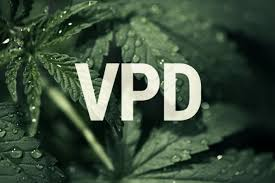 Vpd Chart High Times Vpd How Can Vapour Pressure Deficit Boost Cannabis Yields