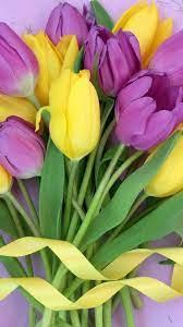 Purple yellow flowers, tulips bouquet ...