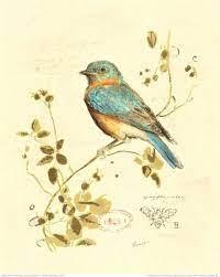 Blue bird by lilia | Bird art, Bird prints, Art prints