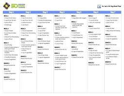 Weight Loss Menu Planner Template Weight Loss Planner Template Weight Loss Tracker Online