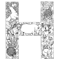 The spanish alphabet consists of 27 letters. Animals And Plants Alphabet Coloring Pages Surfnetkids