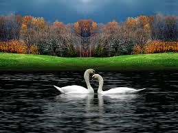 romantic pictures of nature