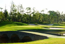 Image result for royal gems golf city