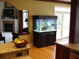 fish tank stand design ideas office aquarium. (An Aquarium Fish Tank Stand Design Ideas Office