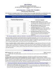 Executive Resume Service Professional Resume Writing Resume