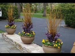 winter flower pots flowers ideas