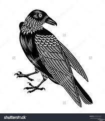 Crow Tattoo Photo Num 3133