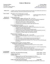 Examples Of A Good Resume Bestresume Com