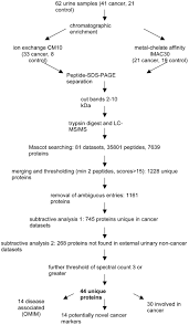 Proteomic Identification Of Potential Cancer Markers In
