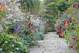 40 Ideas To Steal From English Cottage Gardens Gardenista Extraordinary Wildflower Garden Design Gallery