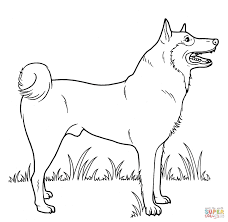 Small Picture Coloring Pages Of Dogs 929