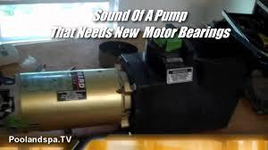 hayward super pump motor bearing change poolandspa tv swimming pool and spa pump repair series