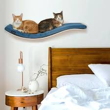 wall mounted cat furniture. Modren Mounted Cat Shelves Wall Mounted Shelf Floating Pet Furniture  Perch   To Wall Mounted Cat Furniture